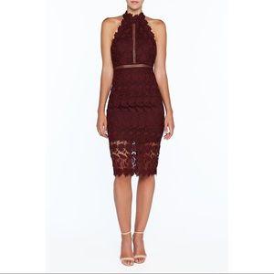 Bardot Noni Halter Lace Wine Cocktail Midi Dress